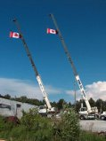 2 cranes and 2 flags